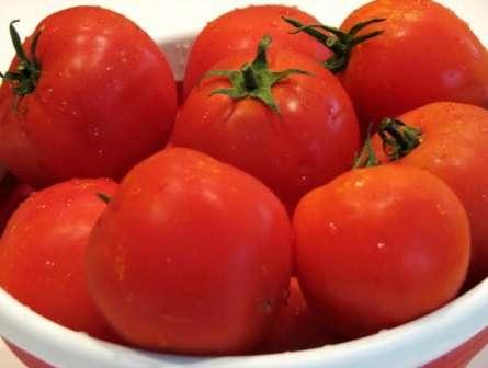 Обратите внимание на томат «санька». Описание сорта, фото, отзывы и некоторые особенности выращивания, возможно, помогут вам понять, что это именно то, что вы искали.