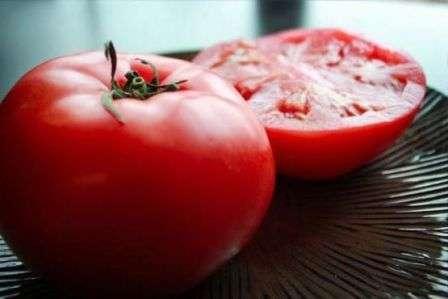 Ультраскороспелый. Отличается небольшим размером куста (до 50 см) и таким же размером плодов (до 90 г).