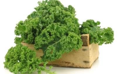 Выращивая эту капусту на своей даче, вы добьетесь сразу двух целей: получите супер полезный овощ и очень оригинальный элемент декорации земельного участка.