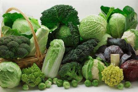 Наиболее известна нам белокочанная капуста, хотя есть и другие не менее вкусные и полезные разновидности этого овоща. В этой статье нашего сайта о фермерстве мы рассмотрим виды капусты с фото и названиями.