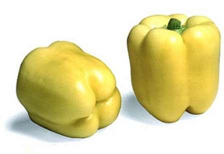 Сорт «Блонди Ф1» - это гибридная разновидность перца, которая созревает очень рано