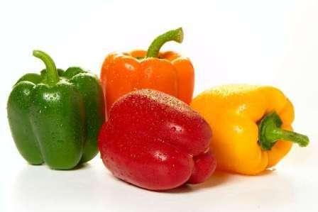 Самые лучше сорта болгарского сладкого перца с толстыми стенками выбирают исходя из условий, в которых предстоит выращивать культуру.