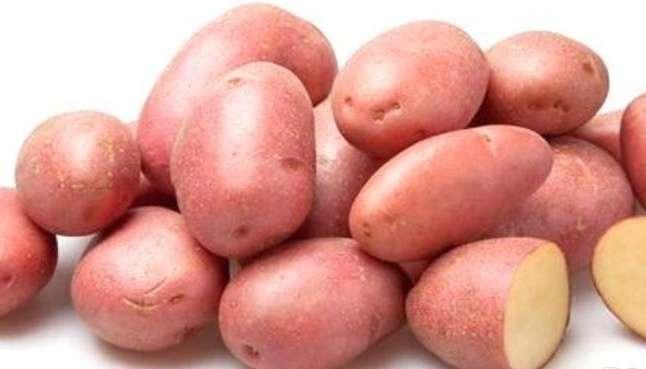 """Особенности сорта картофеля """"Рокко"""". Описание, фото"""