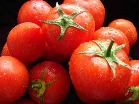 Мы создали для вас внушительный список, в который вошли самые урожайные сорта томатов для открытого грунта. Вы наверняка подберете для себя подходящий вариант из 40 предложенных нами.