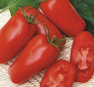 Гаспачо (35 см / 75 г). Эти помидоры имеют необычную цилиндрическую форму и достаточно плотную мякоть, чтобы очень часто попадать в банки с зимними заготовками.