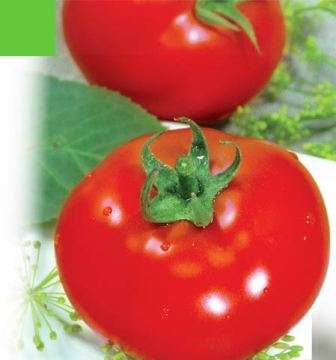 Основной ствол достигает высоты 45 см и является довольно крепким, чтобы томат не упал без подвязки. Однако регулярное пасынкование проводить нужно.