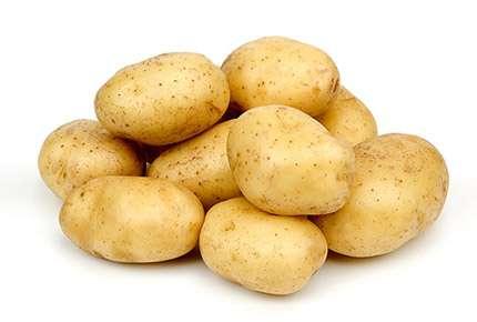 Немаловажным мероприятием, при выращивании этого сорта картофеля, является своевременная обработка специальными средствами для защиты от заражения различными заболеваниями. А также сбор и уничтожение колорадского жука, с последующей обработкой инсектицидами.