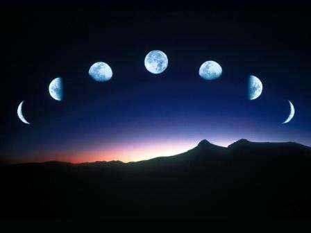 Еще со времен наших прадедов люди знали, что Луна оказывает влияние на растительный мир. Уже тогда было замечено, что посадочные и другие мероприятия не всегда дают одинаковый результат.
