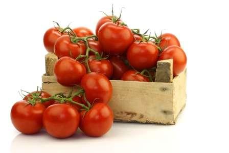Лучшие детерминантные сорта томатов для открытого грунта