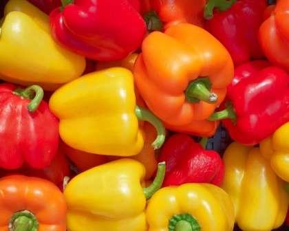 Сорта перца сибирской селекции с фото и описанием