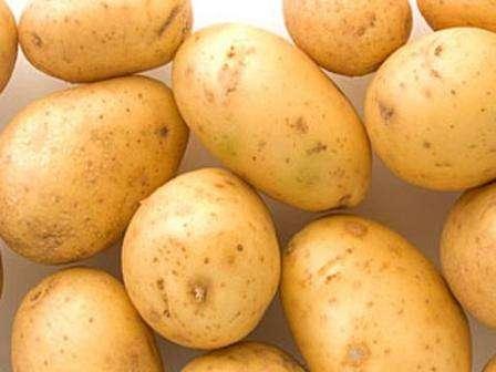 Картофель Санте, описание сорта, фото которого можно найти на нашем сайте, несложно выращивать, поэтому любой, даже начинающий фермер справится с этим заданием.