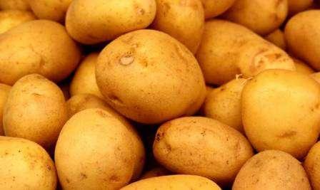 В этой статье - картофель Скарб: описание сорта, фото - мы предлагаем вам поближе познакомиться с этим растением, чтобы знать, как за ним ухаживать на своей ферме.