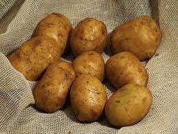 Днепрянка – это картофель, который был выведен в Украине и отличается способностью давать урожай пару раз за один сезон. Мякоть у этого сорта тоже желтого цвета, поэтому придется по душе любителям блюд из