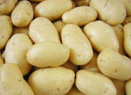 Импала – картофель, который устойчив к негативным природным воздействиям, поэтому плодоносит даже в засушливое или дождливое лето. В теплых регионах вы сможете два раза в год собрать урожай, при этом с од