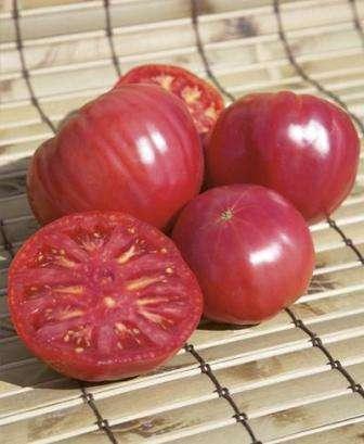 Гибрид Санрайз f1 по отзывам и описанию сорта устойчив к серой пятнистости, раку стебля, вертиц