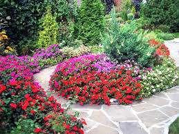 Низкорослые, до 20-25 см. высотой, цветы используют для создания композиций, оформления клумб и альпийских горок. При оформлении клумбы из низкорослых цветов, нужно учесть некоторые правила. Начин