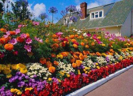 В этом случае, ландшафтные дизайнеры используют разные цветы различных оттенков одного цвета. Цве