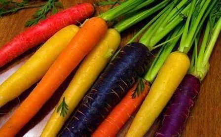 Для посадки моркови нужно выбирать хорошо освещенное место, которое целый день находится под прямыми солнечными лучами. Чтобы корнеплоды были сочными и красивыми, нужно регулярно проводить об