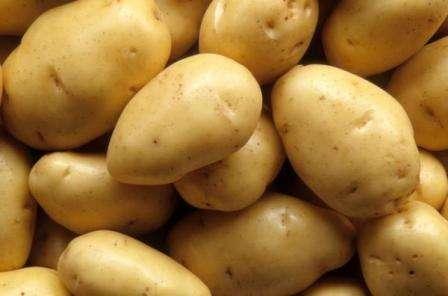 Cорт картофеля Невский: характеристика, отзывы, фото