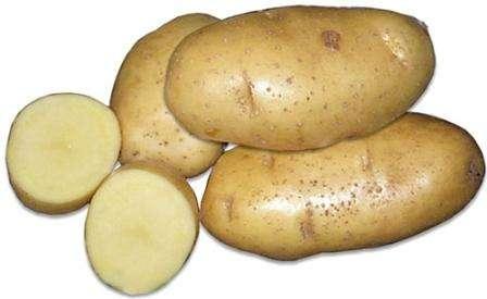 По описанию и отзывам дачников картофель Скраб имеет уникальные вкусовые характеристики, так как отл