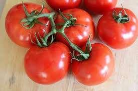Как все южные овощи томат благовест лучше выращивать в теплице. При правильном уходе в тепличных усл