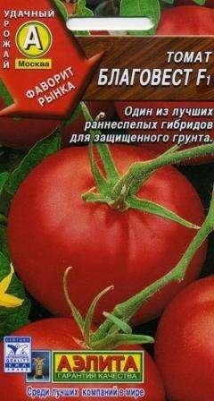 Стоит рассчитать место, требуемое для роста томата Благовест. Один куст обычно по описанию и характеристикам дает большое количество ветвей, так что на 1 кв. м советуют высаживать не более трех рас