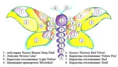 Какие клумбы можно разбить из однолетних цветов