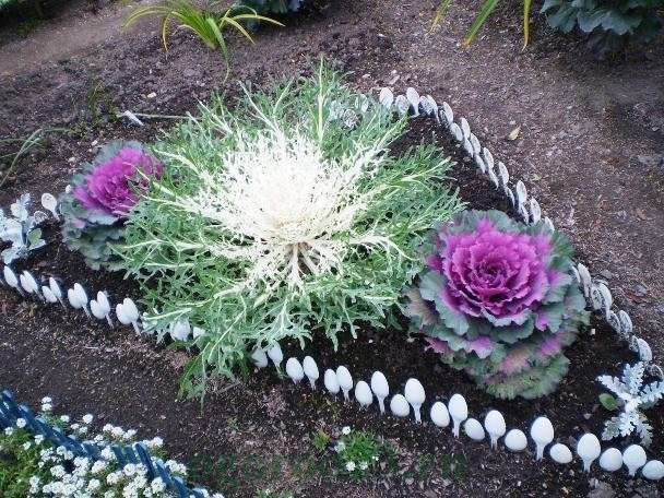 участок цветочных насаждений можно с помощью простых пластиковых ложек