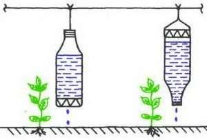 Основные преимущества капельного полива