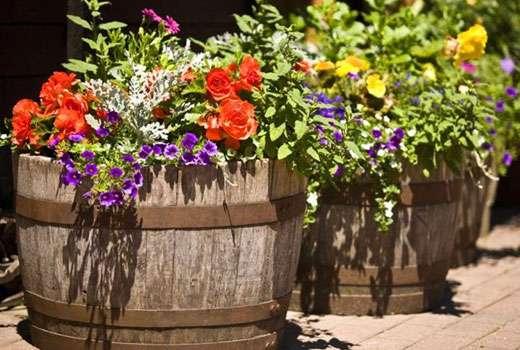 Цветники в емкостях