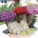 Обустраиваем самостоятельно красивые клумбы и цветники на даче