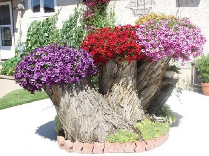 Цветники на старых стволах и пнях