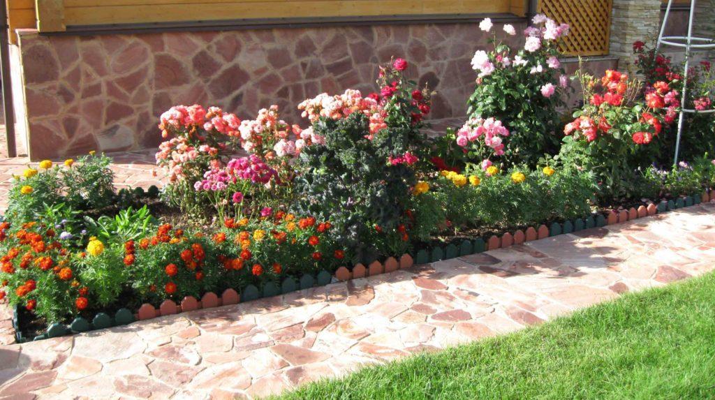 цветник цветущий все лето в тени