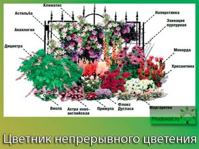 Как сделать цветник или клумбу перед домом своими руками