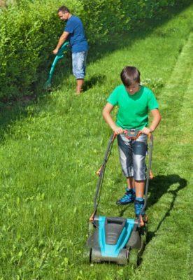 Уход за газоном летом. Основные работы и как их правильно делать