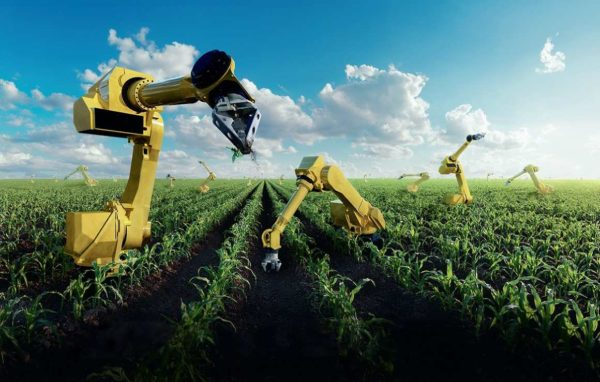 Удобрение почвы: виды удобрений и способы применения