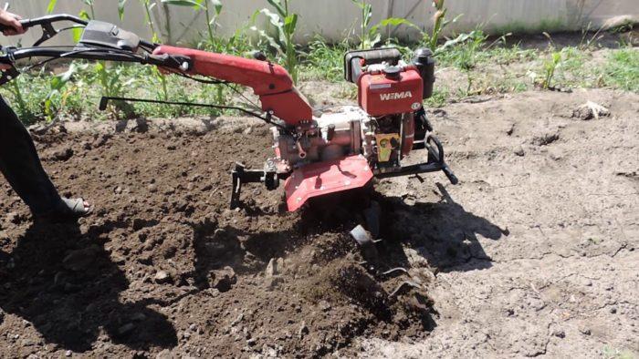 Как выбрать культиватор для своего сада