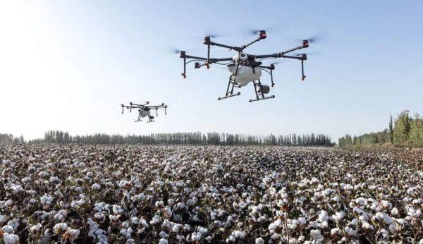 Дроны и сельское хозяйство