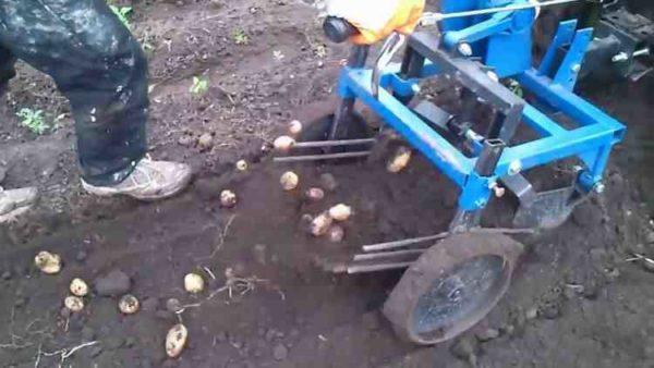 Особенности подключения картофелекопалки к мотоблоку