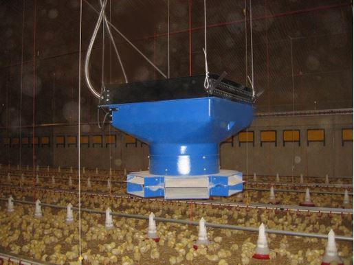 Системы отопления птичников и их влияние на эффективность птицеводства