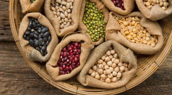 Закупаем семена овощей. Как их выбрать?